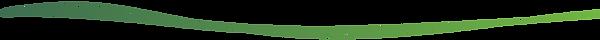 linea%20web%20nanotech-31_edited.png