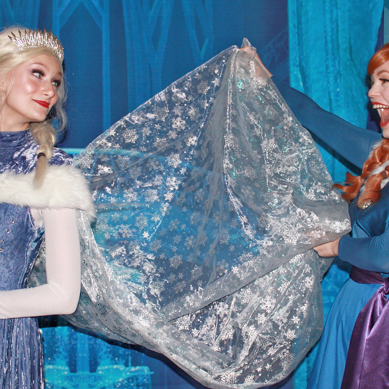 Frozen Night at the Palace