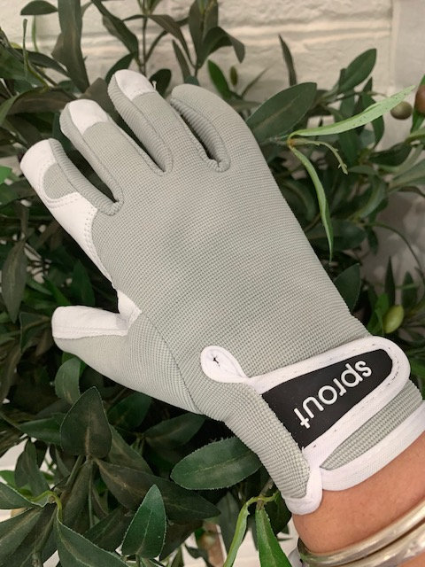 Sprout Goatskin Gloves-Light Grey