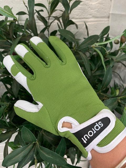Sprout Goatskin Gloves-Olive