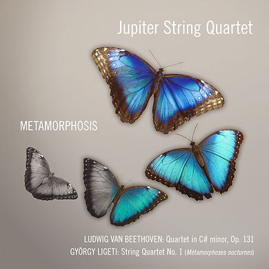 JQ_Metamorphosis-cover.jpg