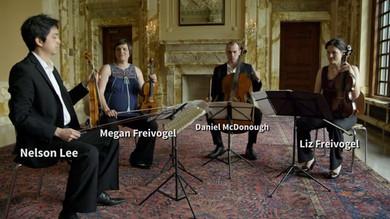 """Franz Schubert (1797-1828) String Quartet No.14 in d minor, """"Death and the Maiden""""  I.Allegro"""