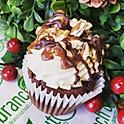Cupcake - Turtle