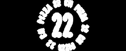 logo_t22см.png