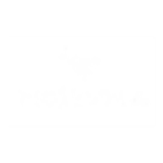 morevna_logo.png