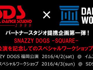 SNAZZY DOGS 宮崎ワークショップ開催!!