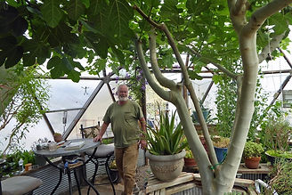 Tom with fig tree in dome.jpeg
