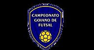 finais-goiano-de-futsal-e1512308259138-r