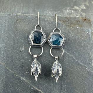 Kyanite and Seed Pod Earrings
