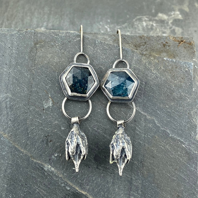 Kyanite and Seed Pod Earrings
