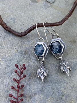kyanite hexagons with seedpods earrings