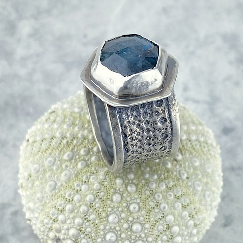 Kyanite and Sea Urchin Ring