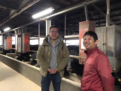 日本皇室承認的國產牛牧場牛