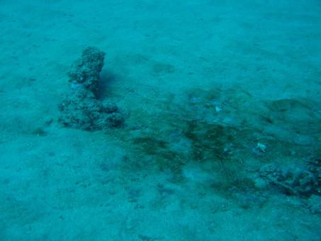 La scoperta del primo relitto sommerso di Isola rossa, di Diego Crippa