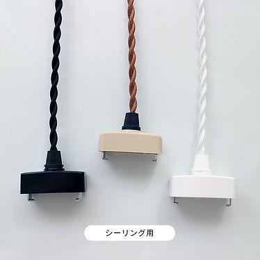 plug_ceiling.jpg
