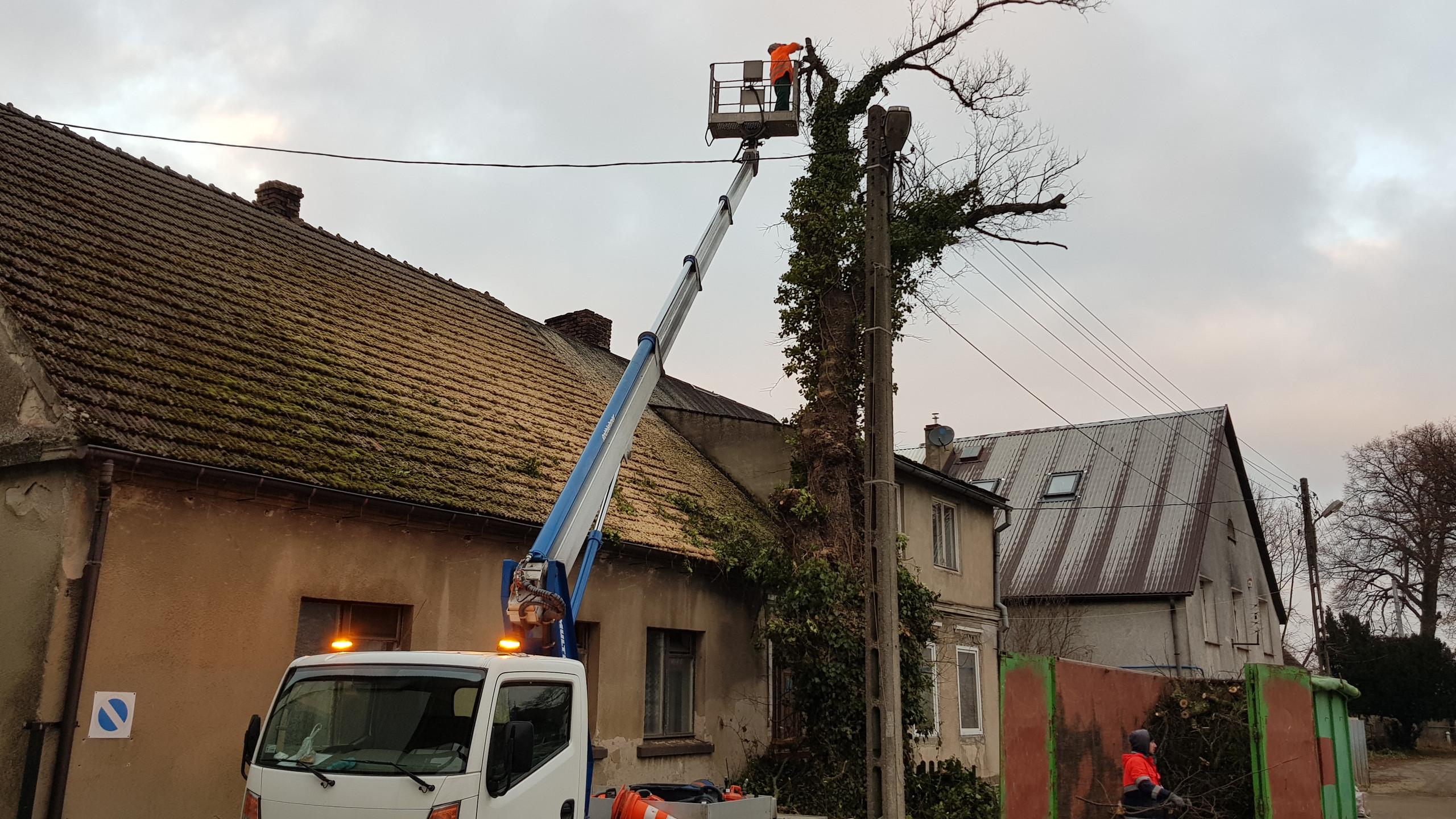 Wycinka drzew trudnych 6