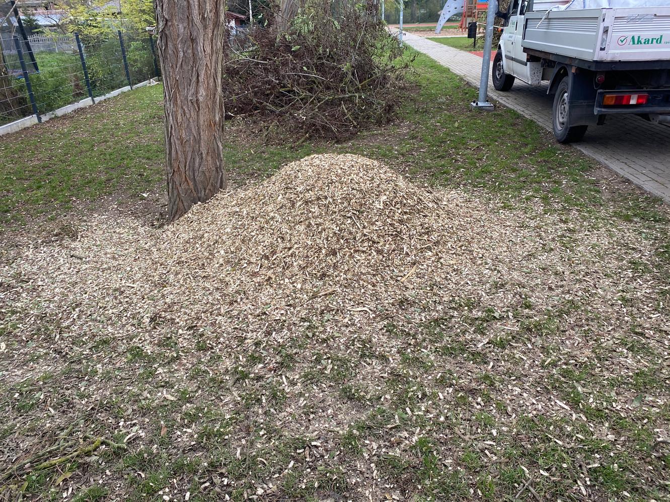 Zrębka drzewna - 9-11mm