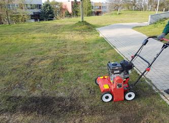 Wiosna - czas na odświeżenie twojego trawnika