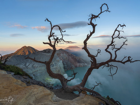Baluran National Park and Mt Ijen in East Java