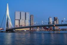 Erasmus bridge during blue hour