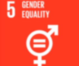 sdg5_edited.png