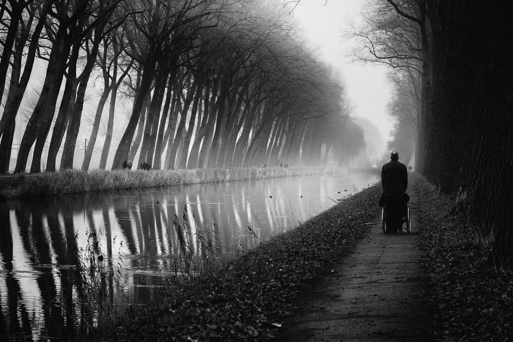 along the canal de Eddy Verloes