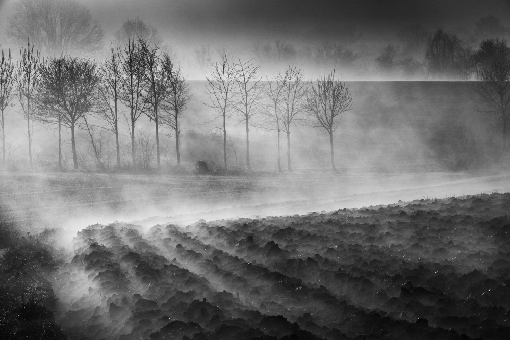 Eddy_Verloes_12.Foggy land