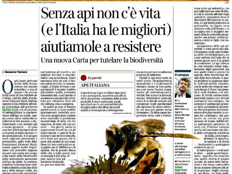 Ronsisvalle & Partners invest in honey