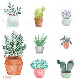 Akvarell növények