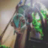 IMG_20161226_204236_625.jpg