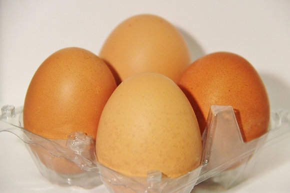 Frische Bio Eier pro Stück