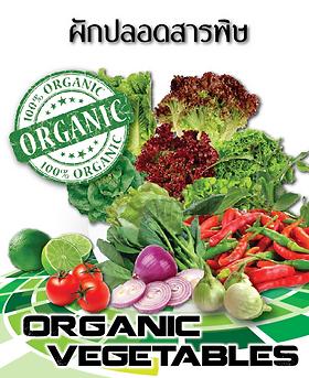 Good Time 889 Organic - Organic Vegetables