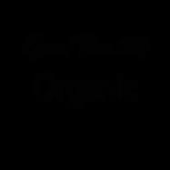 กู๊ด ไทม์ 889 ออร์แกนิค - หน้าแรก - โลโก้