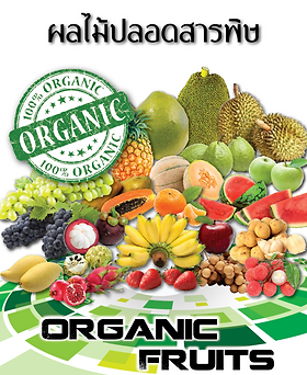 Good Time 889 Organic - Organic Fruits