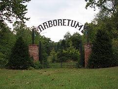 arb2.jpg