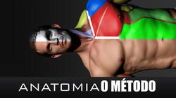 Anato 02