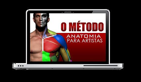 anatomia MAC.png