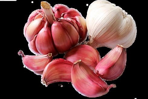 garlic-trans.png