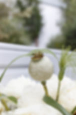 BureauAPS-Diakonos-8983.jpg
