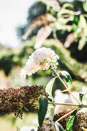 uitvaartbloemen