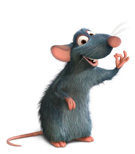Tout sur la ratatouille !