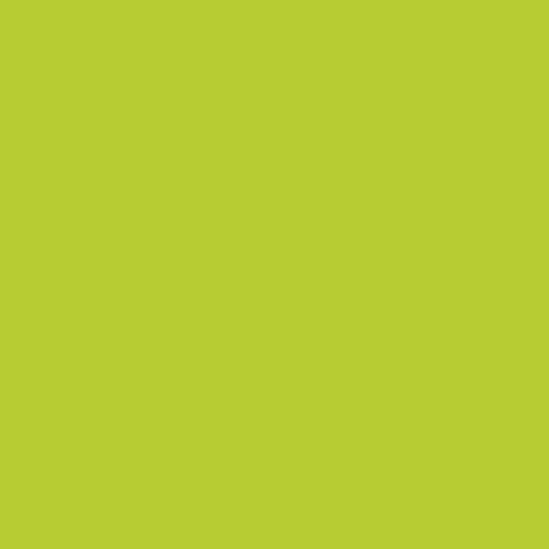 Зеленый лайм гладкий К