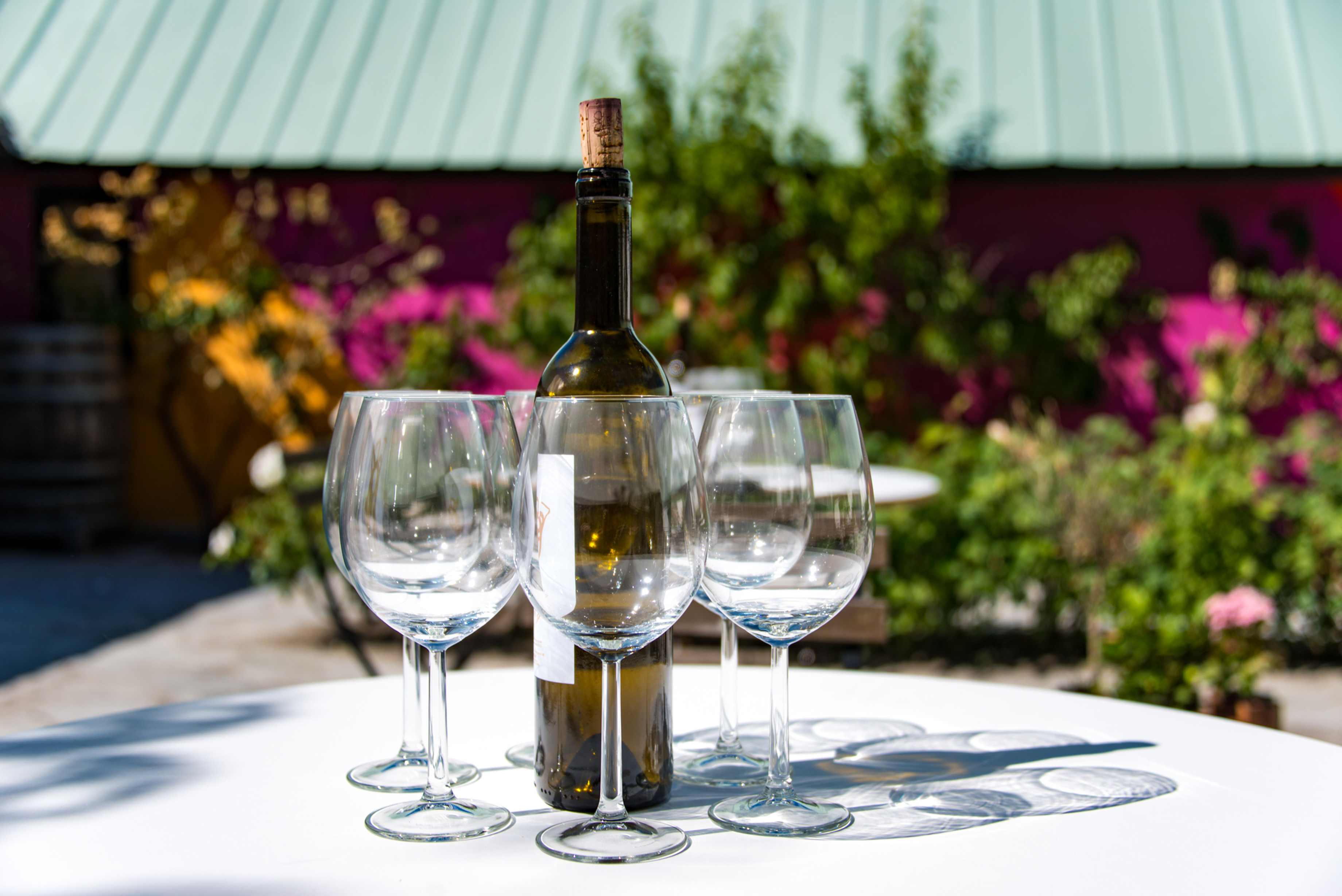 "lilla vinprovningen ""LITTLE WINETASTING"""