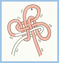 Clover knot (Loops and Intersections).pn