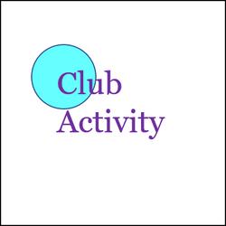 Customise WS - club activity