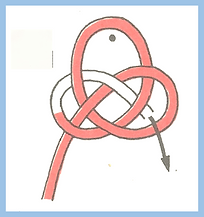 Coin knot (Loops and Intersections).png