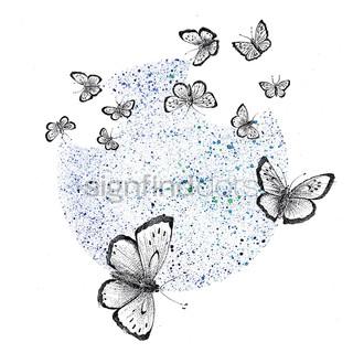"""16. Sortplettet Blåfugl, kritisk truet – """"Engang fløj den frit over blomsterrige overdrev – nu lever den kun få steder"""""""