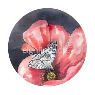"""9. """"Den vigtige nektar – skab områder med sommerfugleblomster"""""""