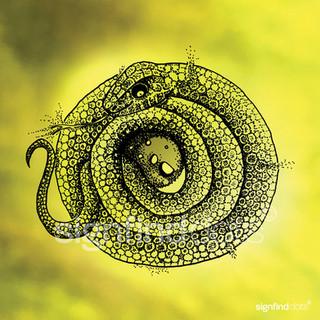 Den gådefulde slange