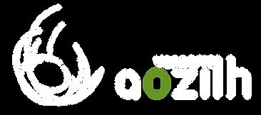 logo_aozilh_blc_paysage.png